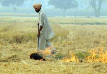 MGNREGA won't make stubble burning go away, says govt panel