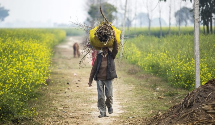 Poverty and inequality in India