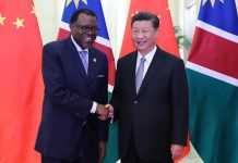 Chinese President Xi Jinping (R) meets with Namibian President Hage Geingob at the Forum of China-Africa Cooperation, Beijing summit | FOCAC website