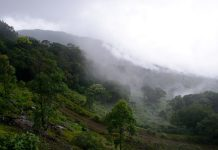 India's Western Ghats
