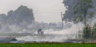 File photo of stubble burning | PTI