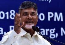 Andhra Pradesh chief minister N. Chandrababu Naidu | Manvender Vashist/PTI